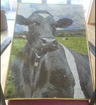 Cow_jigsaw