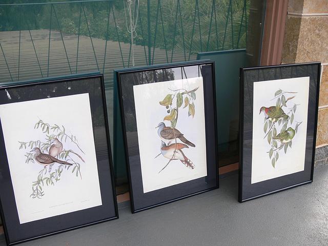 Gould_prints